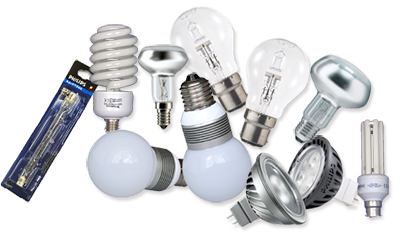 selection of light bulbs
